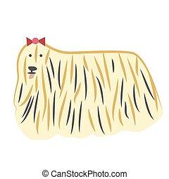 Lap-dog flat illustration