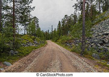 lappland, luosto, finnland, mitte, leerer , straße, wald
