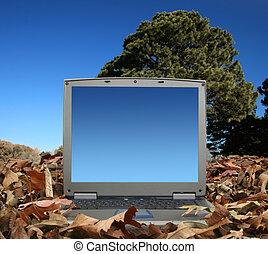 laptop, ao ar livre