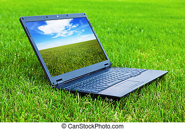 laptop, capim