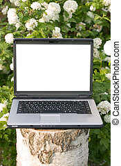 Laptop computer in nature