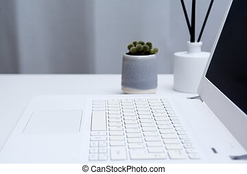 Laptop computer on modern office desk with blank screen