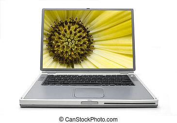 Laptop Concept Spring - Yellow Gerber Daisy