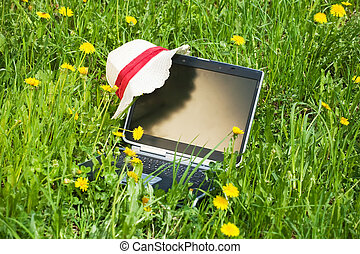 Laptop on the grass