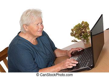 laptop, senhora,  Sênior, trabalhando