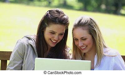 laptop, szczęśliwy, używając, kobiety, młody