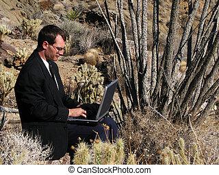 laptop, uso, em, a, deserto