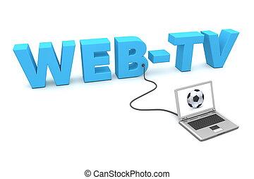 Laptop Wired to WebTV