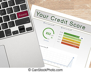 Laptop with the word Freeze on key with credit report