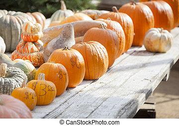 laranja fresca, abóboras, e, feno, em, rústico, outono, armando
