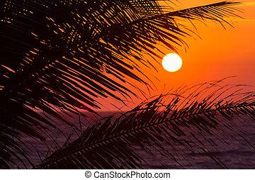 laranja, pôr do sol