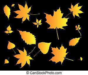 laranja, silhuetas, folhas
