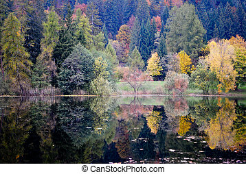 larch and chestnut trees in autumn with enchanted lake