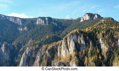 Larch trees and evergreen forest in a rocky mountain -...