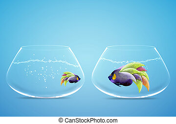 Lack of equal opportunities - Large and small angelfish, ...