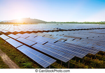 Large area of solar panels