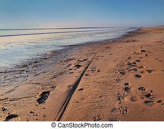large beach at dusk