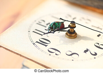 Large beetle on old clock face