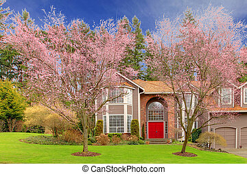 Large brown house with red door and cherry blossom