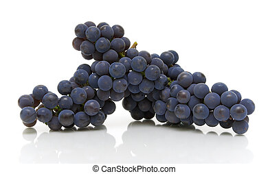 bunch of dark grapes on a white background