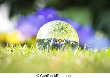 Large droplet on green grass with a reflection