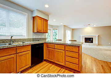 Large empty open kitchen with living room house interior.