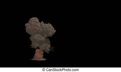 Large explosion and a cloud of dirt