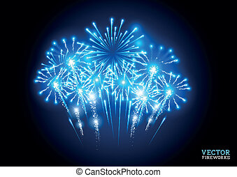 Large Fireworks Display - vector illustration.
