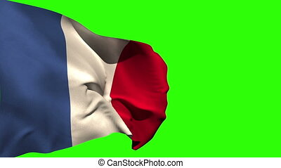 Large france national flag blowing