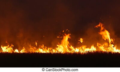 Large grass fire in the field at night