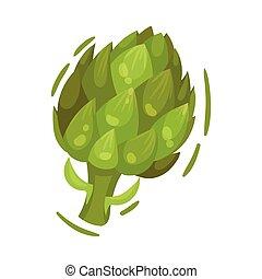 Large green artichoke. Vector illustration on white background.