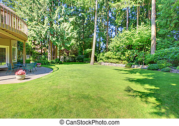 Green large back yard with pine trees.
