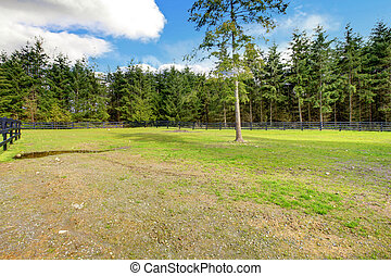 Horse farm pasture with black fence and forest.