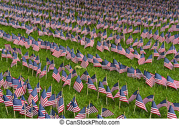 Large group of American flags on a lawn