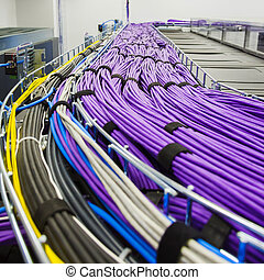 Large group of lilac utp cables - Large group of lilac utp ...