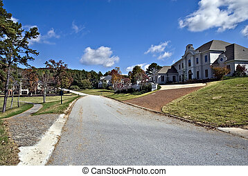 Large Homes in Subdivision