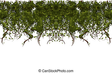 large illustration of ivy or vines hanging down