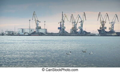 Large industrial cranes on a wharf at a cargo and container...