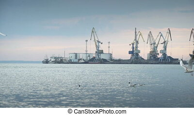 Large industrial cranes on a wharf