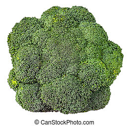 Large inflorescences of fresh broccoli top view