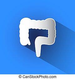 Large intestine vector icon.
