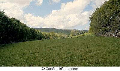 large, irlandais, coup, paysage