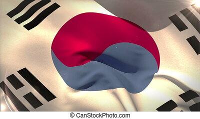 Large korea republic national flag waving with lens flare