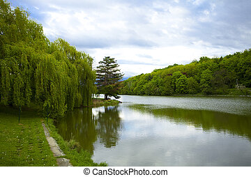large lake in the woods