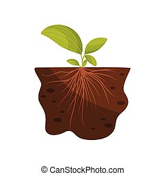Large leaves and thin roots in the soil. Vector illustration.