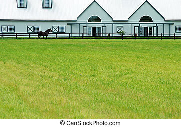 large modern barn with a horse