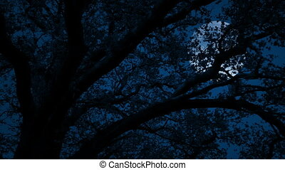Large Moon Behind Tree With Leaves Blowing In Wind - Leafy...