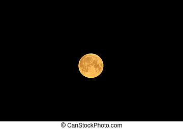 large moon in the night sky