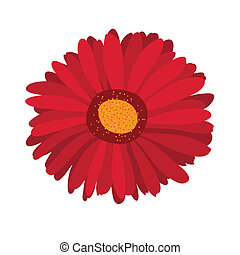 Large pink flower gerbera on background - Large pink flower...