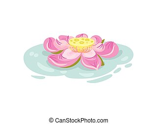 Large pink waterlily flower. Vector illustration on white background.